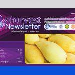 Postharvest Newsletter ปีที่ 15 ฉบับที่ 4 ตุลาคม - ธันวาคม 2559