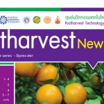 Postharvest Newsletter ปีที่ 17 ฉบับที่ 2 เมษายน - มิถุนายน 2561